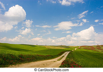 Tuscan Landscape - Countryside rural dirt path Tuscany,...