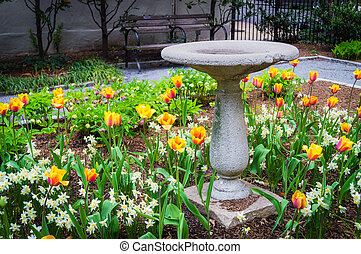Old Bird Bath in the Park - An old bird bath in a Spring...