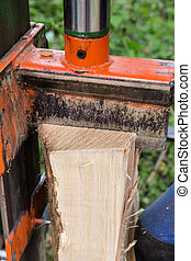 Hydraulic wood splitter - Closeup view of an ash wood log...