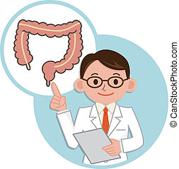 Doctor for a description of the large intestine