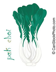 Pak Choi - Illustration of fresh vegetable Cartoon chinese...