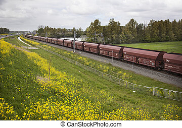 freight train in the Netherlands - long freight train in the...
