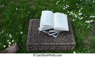 woman hand book flower