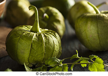 Group of Organic Green Tomatillos on a Background