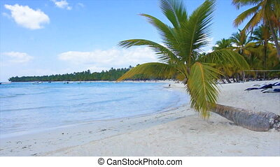 caribbean bay - natural beautyful caribbean landscape