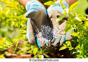 garden fertilizer on gardeners hand