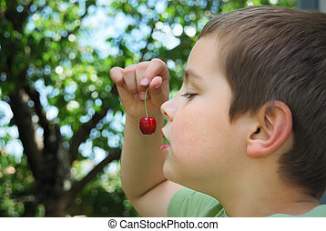 Sweet temptation - Boy holding a bing cherry in his hand in...