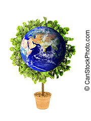 Planet Earth Eco Plant - A planet earth growing tree or...