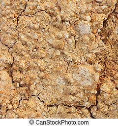 earthy background image