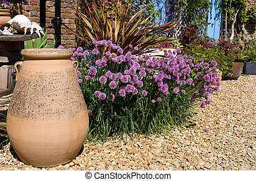 Flowering chives - Flowering Chives next to stone pot in...