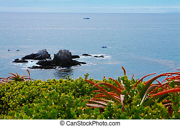 Ocean view. Laguna Beach - Beautiful view of the pacific...