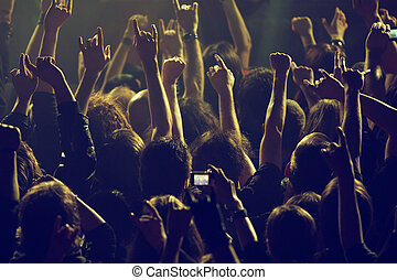 On the concert - Crowd rocking on the concert
