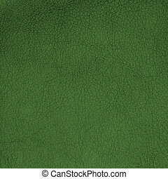 Green leather - Closeup detail of green leather texture...