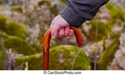Mans hand with walking stick