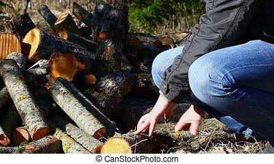 Man stacks firewood