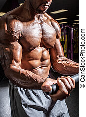 Weight Trainer Curling - Muscular body builder working out...