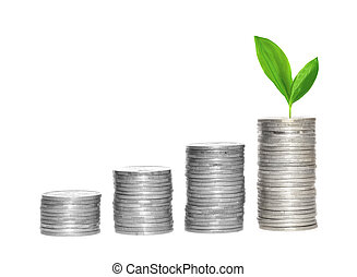 Savings, increasing columns of silver coins and green plant...