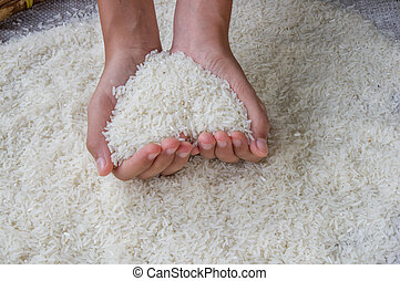 Thai jasmine rice on hand
