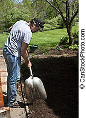 Man with shovel landscaping - Man with shovel mulching a...