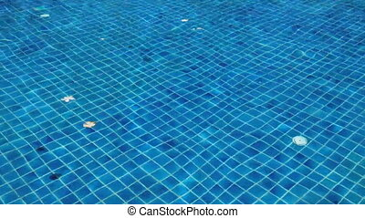 Swimming Pool Abstract Background