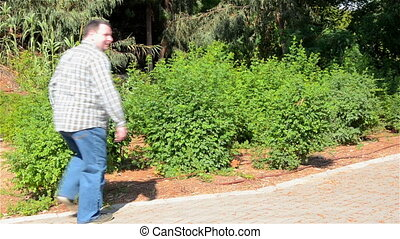 Man peeing into the shrubs - Man in jeans peeing into the...