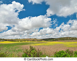 view of  green rural area. Spain, Andalusia
