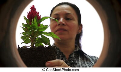 Female Gardener Inside Clay Pot Pla - Inside a clay pot shot...