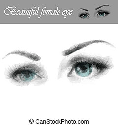 Beautiful female eye