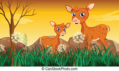 Two deers near the grass
