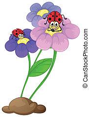 fiori, coccinelle