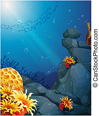 The corals near the rocks and the school of fish -...