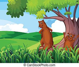 Wild animals under the tree