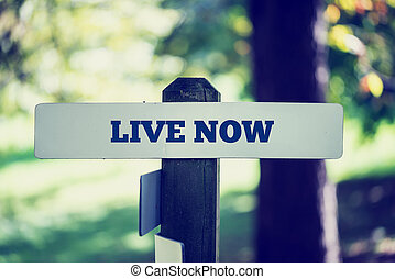Live now - Old rustic signpost with the phrase Live now,...