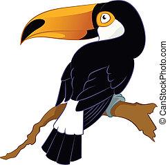Toucan - Vector image of a cartoon smiling Toucan