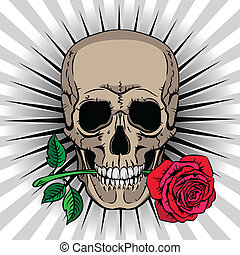 Skull holding a rose in his mouth on striped background