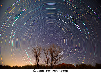 Polaris and star trails over trees - Polaris and star trails...