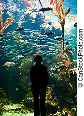 Another World - A woman looking into a large aquarium tank
