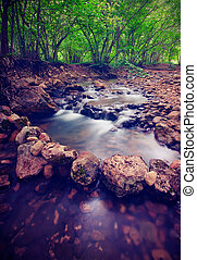Mountain forest river. Vintage style - Mountain forest river...