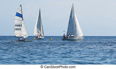Sailboats at Sea
