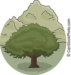 Scene oak
