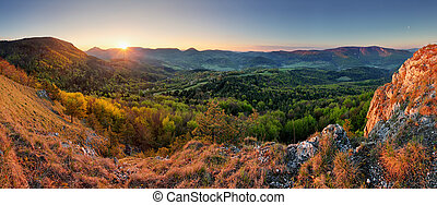 Slovakia spring forest panorama