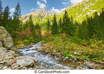 The Roztoka Stream. The High Tatras, Carpathian Mountains. -...