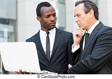 Asking for an expert advice. Two confident business men looking at laptop while one of them holding hand on chin
