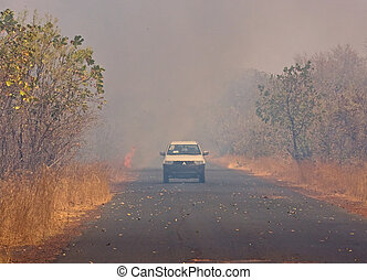 Bush Fire in The Gambia, with vehicle just emerging from...