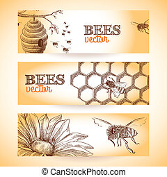 Bee banner sketch - Honey bee hive comb and flower sketch...