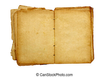 old book - Open old book with blank pages for text isolated...