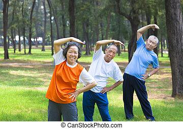 seniores, ginástica, tudo, parque