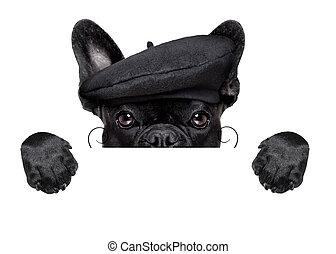 perro, francés