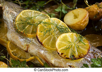 Lemon On Trout Fillet - Slices of baked lemon on delicious...