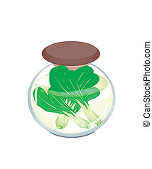 A Jar of Delicious Pickled Baby Pakchoi - Vegetable, An...